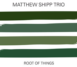 Shipp, Matthew Trio: Root Of Things (Relative Pitch)