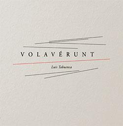 Luis Tabuenca: Volaverunt (Aural Terrains)