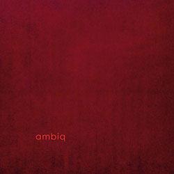 Rohrer, Samuel / Max Loderbauer / Claudio Puntin : Ambiq [VINYL] (Arjunamusic)