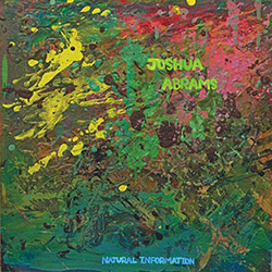 Abrams, Joshua: Natural Information