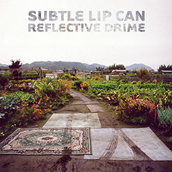 Subtle Lip Can: Reflective Drime