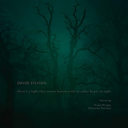 Sylvian, David (w/ Franz Wright / Christian Fennesz): There's a Light That Enters Houses With No Oth