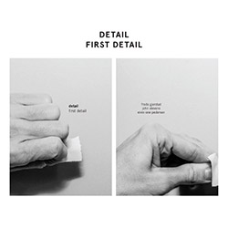 Detail: Stevens / Pedersen / Gjerstad: First Detail [VINYL + CD]