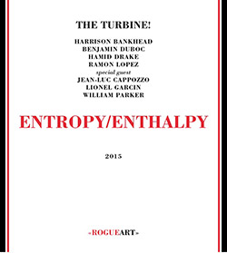 The Turbine! (Bankhead / Duboc / Drake / Lopez + guests): Entropy/Enthalpy [2 CDs] (RogueArt)