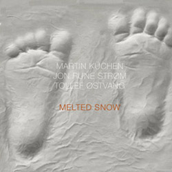 Kuchen, Martin / Jon Rune Strom / Tollef Ostvang: Melted Snow [VINYL] (NoBusiness)