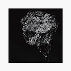 Toop, David: Entities Inertias Faint Beings [VINYL]
