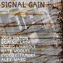 Sinton, Josh / Dominic Lash: Signal Gain <i>[Used Item]</i> (OutNow Recordings)