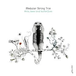 Modular String Trio (Okhrimchuk / Jedrzejewski / Kacperczyk): Ants Bees and Butterflies (Clean Feed)