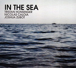 Honsinger, Tristan / Nicolas Calioa / Jesse Zubot: In The Sea (Relative Pitch)