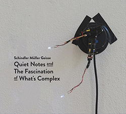 Schindler / Muller / Geisse: Quiet Notes and The Fascination of What's Complex [2 CDs]