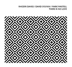 Davies, Rhodri / David Sylvian / Mark Wastell: There Is No Love (Confront)