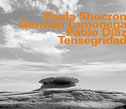 Shocron, Paula / German Lamonega / Pablo Diaz: Tenzegridad <i>[Used Item]</i>