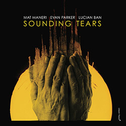 Mat Maneri / Evan Parker / Lucian Ban: Sounding Tears (Clean Feed)