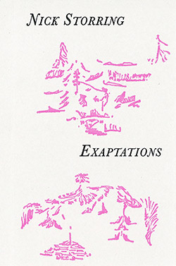 Storring, Nick : Exaptations [CASSETTE] (Notice Recordings)