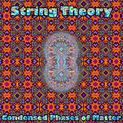 String Theory [Boston, USA]: Condensed Phases of Matter