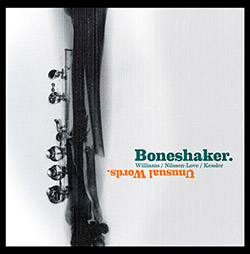 Boneshaker (Mars Williams / Paal Nilssen-Love /  Kent Kessler): Unusual Words