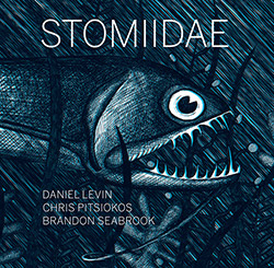 Levin, Daniel / Chris Pitsiokos / Brandon Seabrook: Stomiidae (Dark Tree Records)