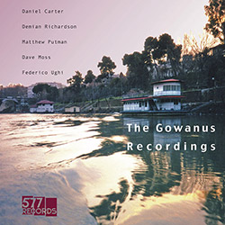 Carter, Daniel / Demian Richardson / Matthew Putman / David Moss / Federico Ughi: The Gowanus Record