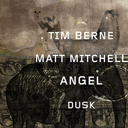 Berne, Tim / Matt Mitchell Duo: Angel Dusk