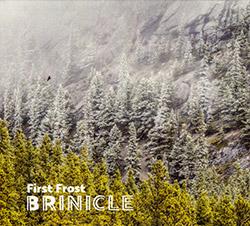 Brinicle (McCormick / Bjorgo / Antalova): First Frost