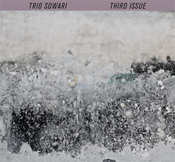 Trio Sowari: Third Issue (Mikroton Recordings)