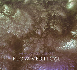 Jovicevic, Jasna Sextet: Flow Vertical