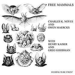Noyes, Charles K. / Owen Maercks w/ Henry Kaiser / Greg Goodman: Free Mammals [VINYL] (Feeding Tube Records)