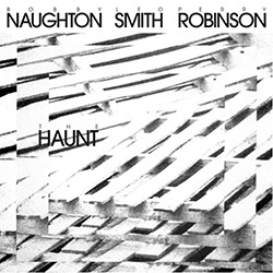 Bobby Naughton / Wadada Leo Smith / Perry Robinson: The Haunt (NoBusiness)