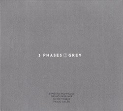Rodrigues, Ernesto / Bruno Parrinha / Nuno Torres / Paulo Galao: 3 Phases (II) Grey (Creative Sources)
