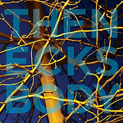 The Necks: Body (Northern Spy)