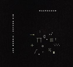 Morris, Joe / Do Yeon Kim: Macrocosm (Glacial Erratic)