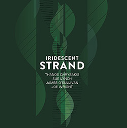Thanos Chrysakis / Sue Lynch / James O'Sullivan / Joe Wright: Iridescent Strand (Aural Terrains)