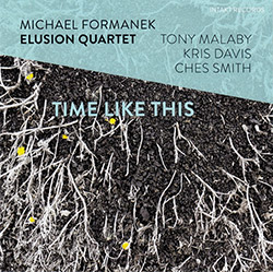 Formanek, Michael Elusion Quartet: Time Like This (Intakt)