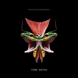 Buck, Tony / Massimo Pupillo: Time Being [VINYL] (Trost Records)