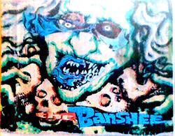 Chadbourne, Eugene: The Banshee <i>[Used Item]</i>
