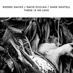 Davies, Rhodri / David Sylvian / Mark Wastell: There Is No Love [WHITE VINYL RSD]