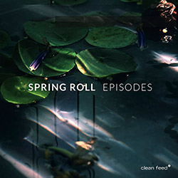 Spring Roll (Helary / Mayot / Rayon / Lemetre / Davis): Episodes <i>[Used Item]</i> (Clean Feed)