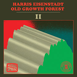 Eisenstadt, Harris (Malaby / Roebke / Bishop): Old Growth Forest II [CASSETTE with DOWNLOAD]