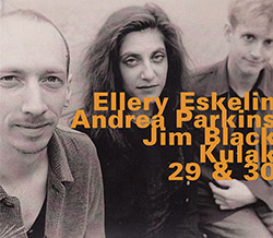 Eskelin, Ellery / Andrea Parkins / Jim Black: Kulak, 29 & 30 (Hatology)