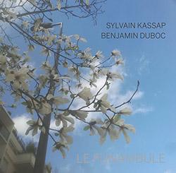 Kassap, Sylvain / Benjamin Duboc: Le Funambule (Dark Tree Records)