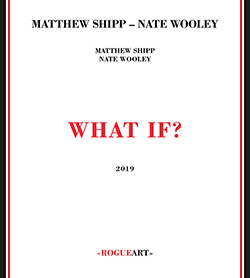 Shipp, Matthew / Nate Wooley: What If? (RogueArt)