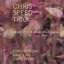 Speed, Chris Trio (w/ Tordini / King): Respect For Your Toughness (Intakt)