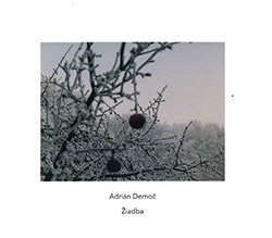Adrian Democ / Apartment House: Ziadba (Another Timbre)