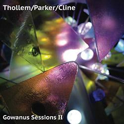 Thollem / Parker / Cline: Gowanus Sessions II (ESP)