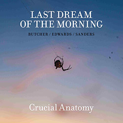 Last Dream Of The Morning (Butcher / Edwards / Sanders): Crucial Anatomy (Trost Records)