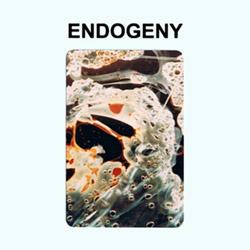 Montgomery, Gen Ken: Endogeny [CASSETTE]