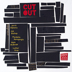 Dijkstra / Bishop / Karayorgis / McBride / Gray: Cutout (Driff Records)