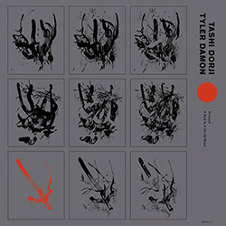 Dorji, Tashi / Tyler Damon: To Catch A Bird In A Net Of Wind [VINYL]