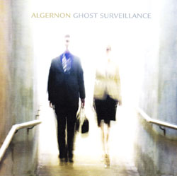 Algernon: Ghost Surveillance <i>[Used Item]</i>