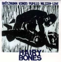 Brotzmann / Kondo / Pupillo / Nilssen-Love: Hairy Bones